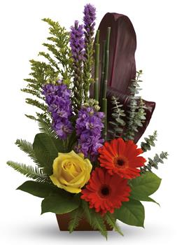 Code: A43. Name: Garden Oasis. Description: Artfully yours. Impress that special someone with this natural sculpture featuring gerberas, roses, stock and ti leaves. Price: GBP £57.48